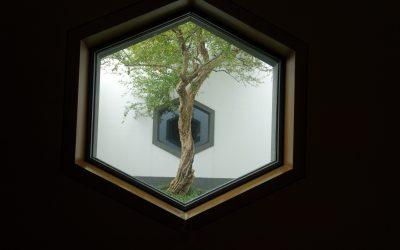 Feng Shui windows – from China trip
