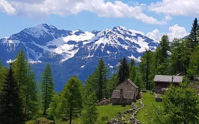Beautiful alpine homes and views